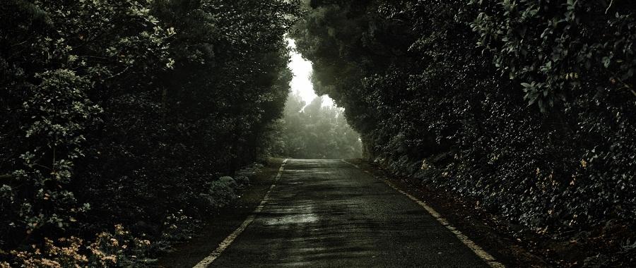 http://www.jotaefege.com/fotografia/wp-content/uploads/2012/08/the-road.jpg